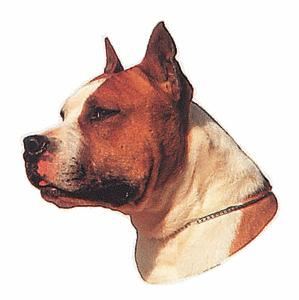 AMERICAN STAFFORSHIRE TERRIER II*