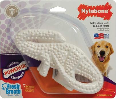 NYLABONE DENTAL DINO L