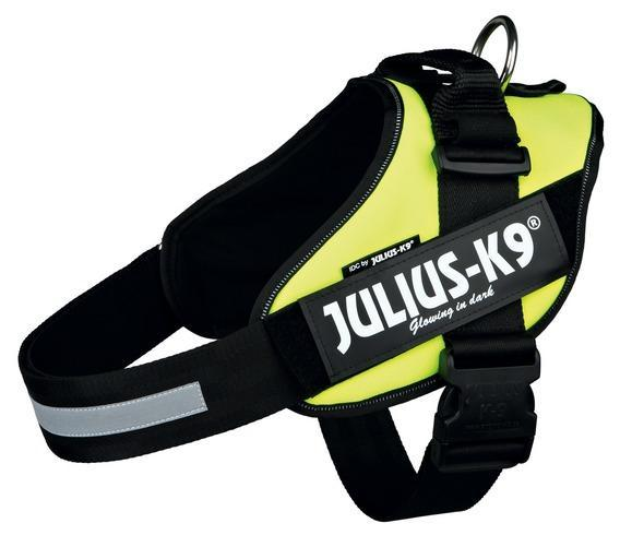 PEITORAL JULIUS K9 IDC NEON