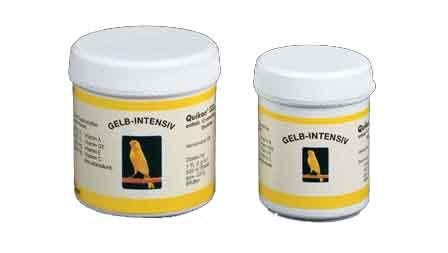 QUIKO COLORANT JAUNE INTENSIF