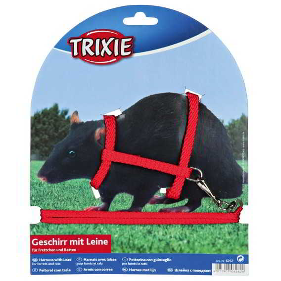 HARNESS WITH LEAD FOR FERRETS