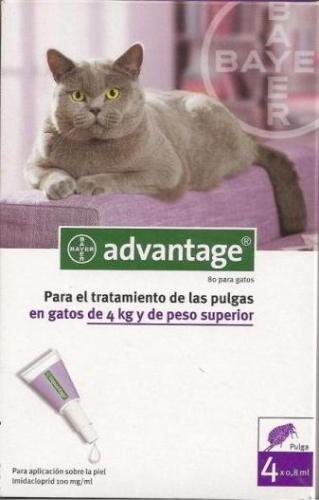 ADVANTAGE GATO 2