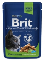 BRIT CAT SALMON & TROUT 100 GR