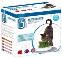 CAT IT SENSES - GRASS GARDEN