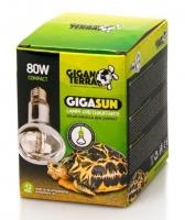GIGANTERRA GIGASUN COMPACT 80W