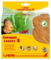 SERA FOLHAS DE CATAPPA